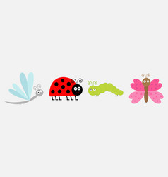 insect icon set line ladybug dragonfly butterfly vector image
