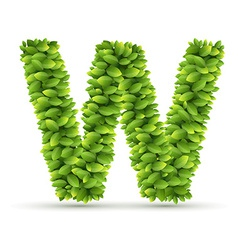 Letter W alphabet of green leaves vector image