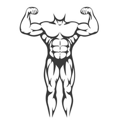 male body muscle black silhouette vector image