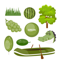 Objects green color vector
