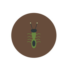 Stylish icon in color circle ant insect vector