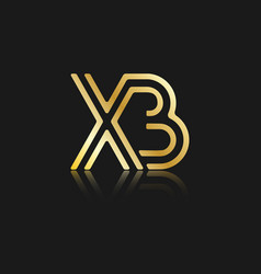 Stylized lowercase letters x and b vector