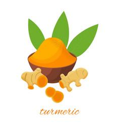 turmeric root leaves and powder in ceramic plat vector image