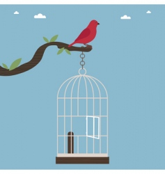 bird out of cage vector image