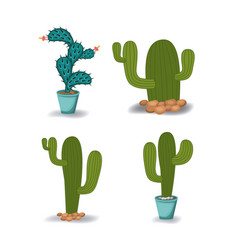 natural cactus plant and cactus pot set in vector image