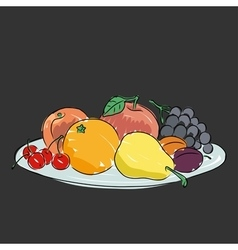 A plate with fruit vector image