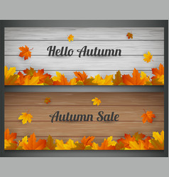 autumn banners set autumn sale background with vector image