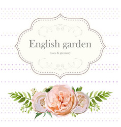 cute floral square design frame with garden rose vector image