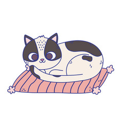 cute white and black cat resting in mat pet vector image