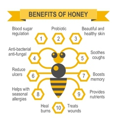 Healthy honey infographic placard vector