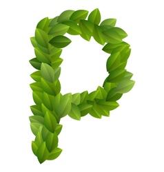 Letter P of green leaves alphabet vector image