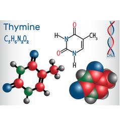 Thymine thy- pyrimidine nucleobase vector
