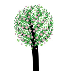 Tree with pink blossom vector image