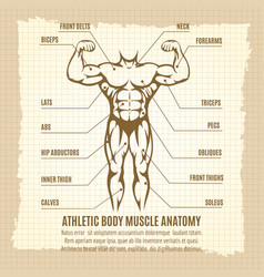 vintage poster with athletic body infographics vector image