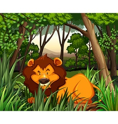 Lion living in the dark forest vector image