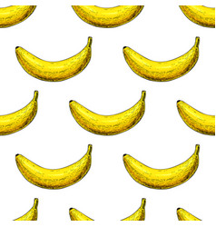banana seamless pattern isolated hand vector image vector image