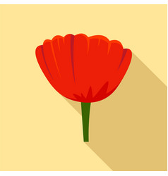 beauty poppy flower icon flat style vector image