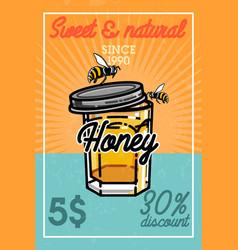color vintage honey banner vector image