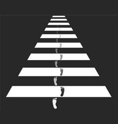 cross walk vector image