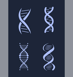 dna deoxyribonucleic acid chains set nucleotide vector image