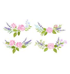 floral arrangement with rose flower and lavender vector image