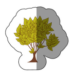 lime green natural tree icon vector image