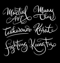 Martial art sport hand written typography vector