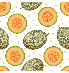 melon seamless pattern isolated on white vector image