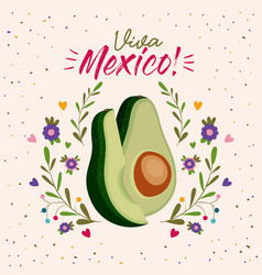 viva mexico colorful poster with middle avocado vector image
