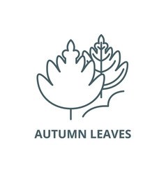 autumn leaves line icon autumn leaves vector image