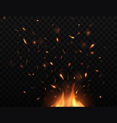 bonfire sparks flying up burning fire vector image
