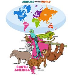 educational cartoon south american animals vector image