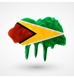 Flag of Guyana painted colors vector