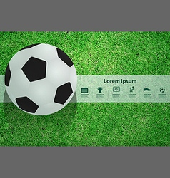 Soccer ball on the field design template vector image