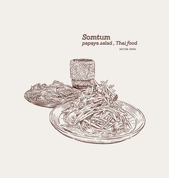 som-tum set rice noodle and sticky rice hand vector image