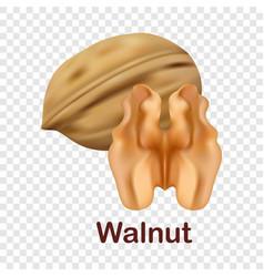 Walnut icon realistic style vector