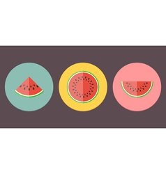 Watermelon Icon Collection vector image