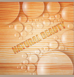 natural beauty background vector image