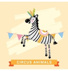 Circus Zebra animal series vector image vector image