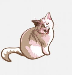 cat meows vector image