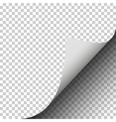 Page curl with shadow of a blank sheet of paper pl vector