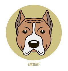 Portrait of amstaff vector