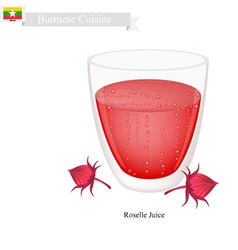 Roselle Juice A Famous Beverage in Myanmar vector image