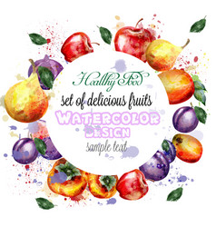 watercolor fruits wreath apple plum pear vector image