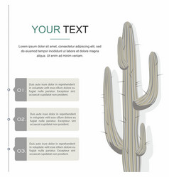 Cactuses isolated on white background vector