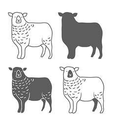 Domestic Animal Sheep vector image vector image