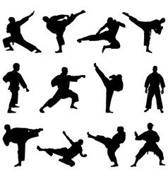 karate fighting vector image