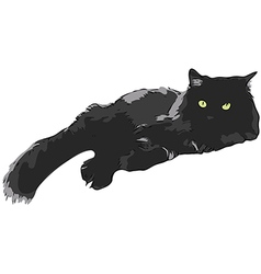 Black Cat vector image