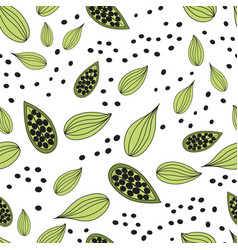 cardamom spice seamless pattern of vector image