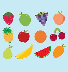 Fruity fruits vector